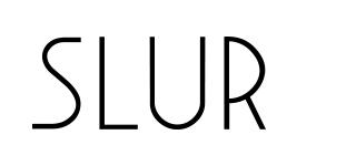 slur logo